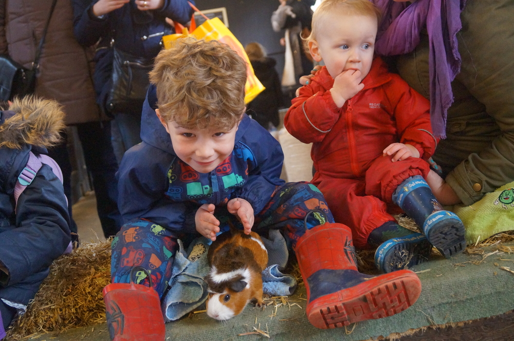kids playing with the farm animals at Chatsworth